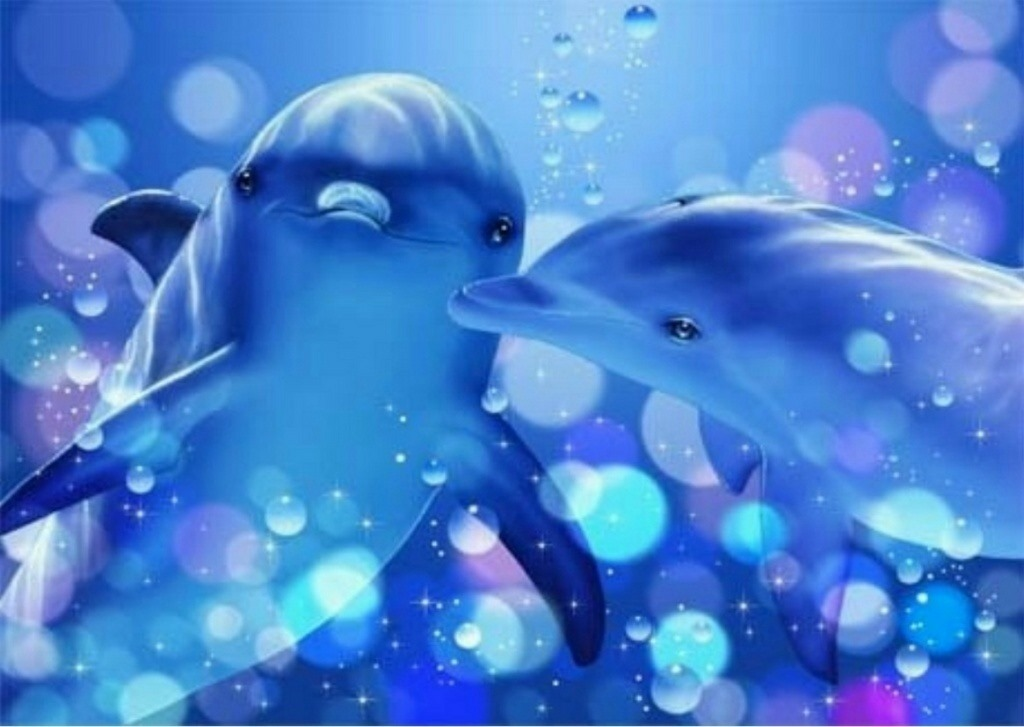Videos de delfines homosexuales